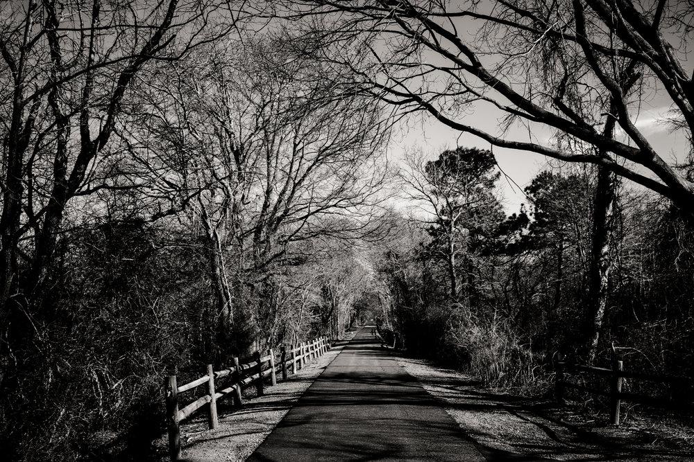 hike2-24-32.jpg