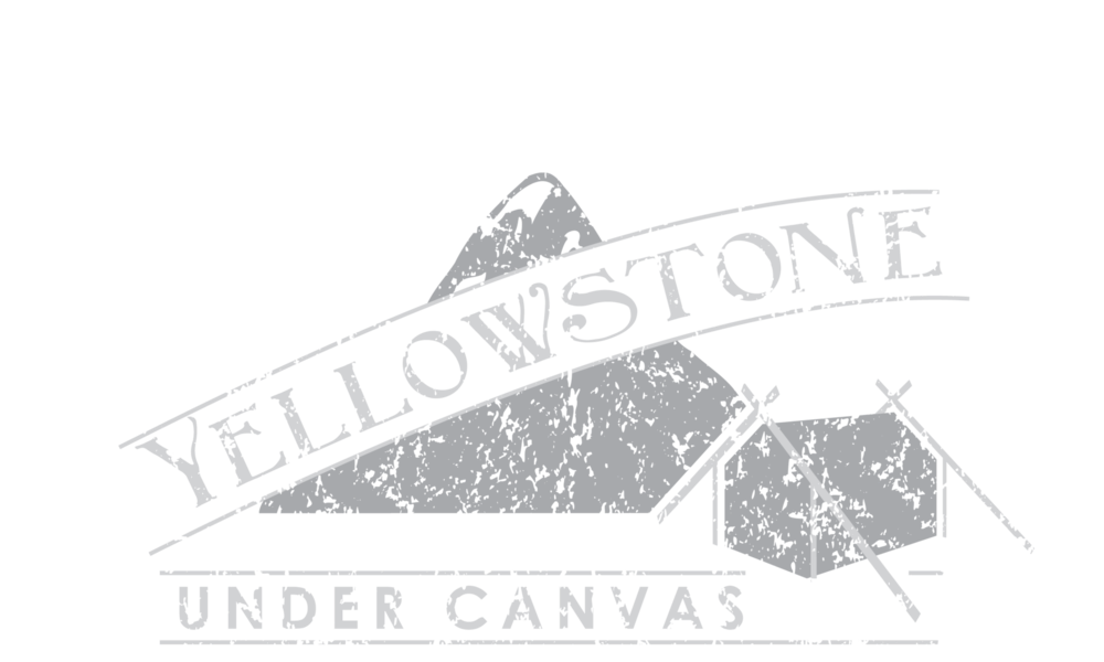 YellowstoneUnder_Canvas_Logo_white copy.png