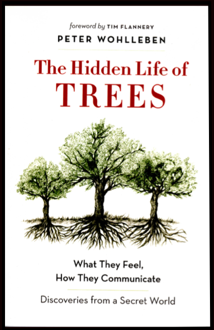 Hidden-Life-Of-Trees-Book-Cover