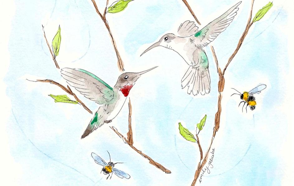 SavvyMag-BirdsBeesCoverb.jpg