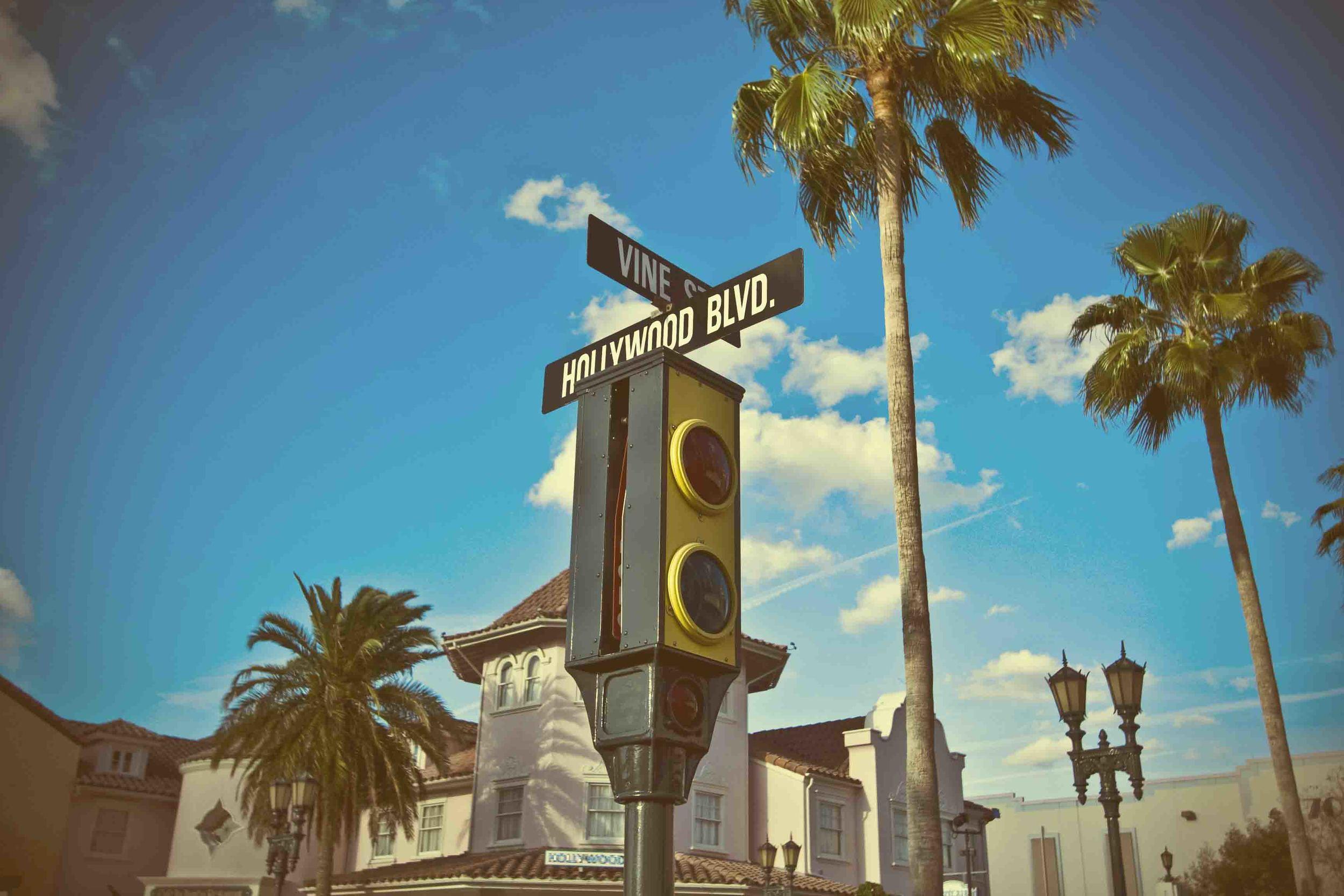 Hollywood&vine