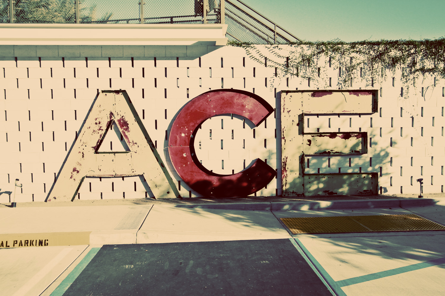 Palm Springs 2013// ©Thrifted 2013
