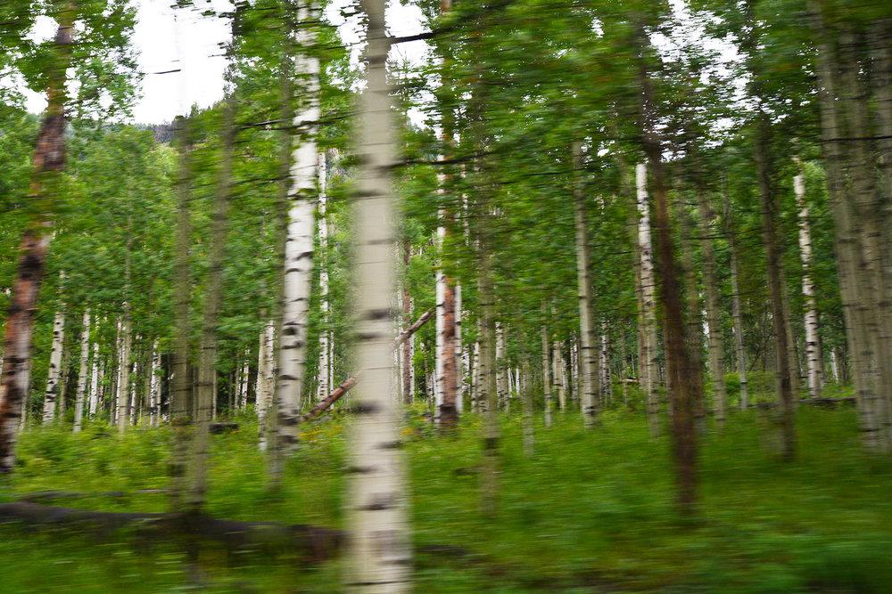 Colorado sabrina staires 3193.jpg