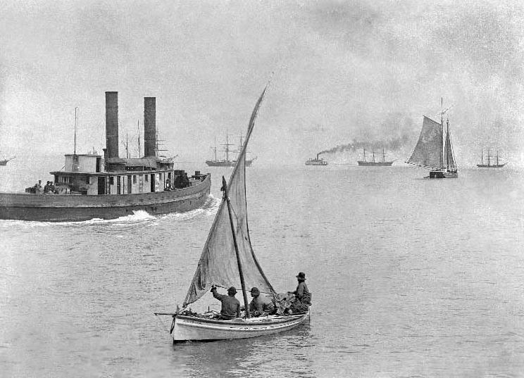 Old School Sailing Pescatori Italiani Vela Baia Di San Francisco