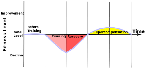 Supercompensation principle