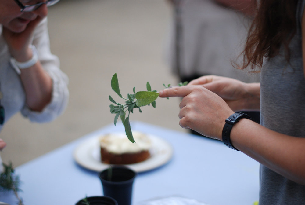 At HACKNEY HERBAL workshops you will learn and create herbs for the home, herbs for the skin, herbs for health and herbal potions for your bath.