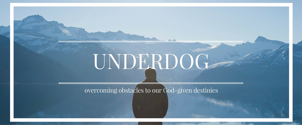 Underdog 2 - Dealing with Fear Taking Risks.001.jpeg