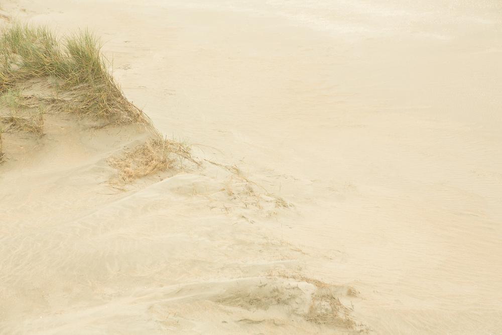 Dunes I, 2016.jpg