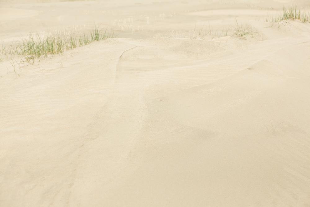 Dunes IV, 2016.jpg