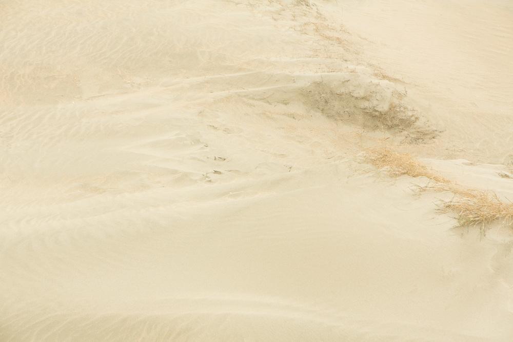 Dunes V, 2016