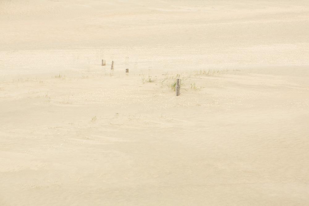 Dunes II, 2016 //  120 x 180 cm