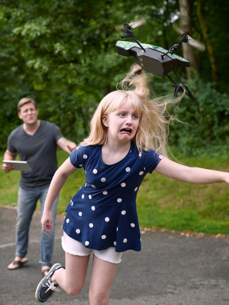 Domestic Drones, Conceptual