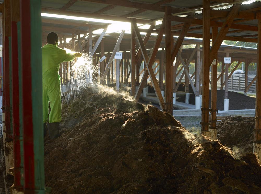 A member of the SOIL waste treatment team hydrates a compost pile, Cap-Haitien, Haiti.