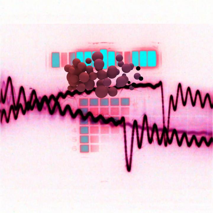 Audio_Visual01310.jpg