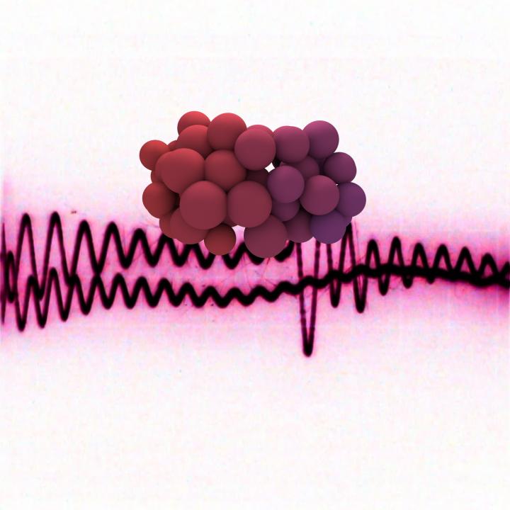 Audio_Visual01490.jpg