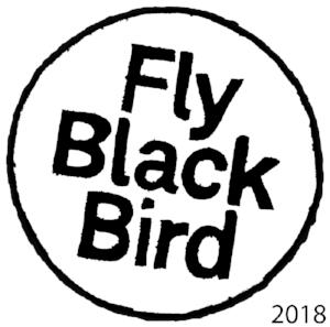 FlyBlackBird_IDNW.jpg