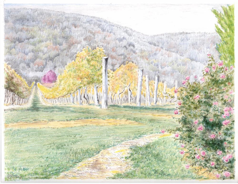 Afton Mountain Winery