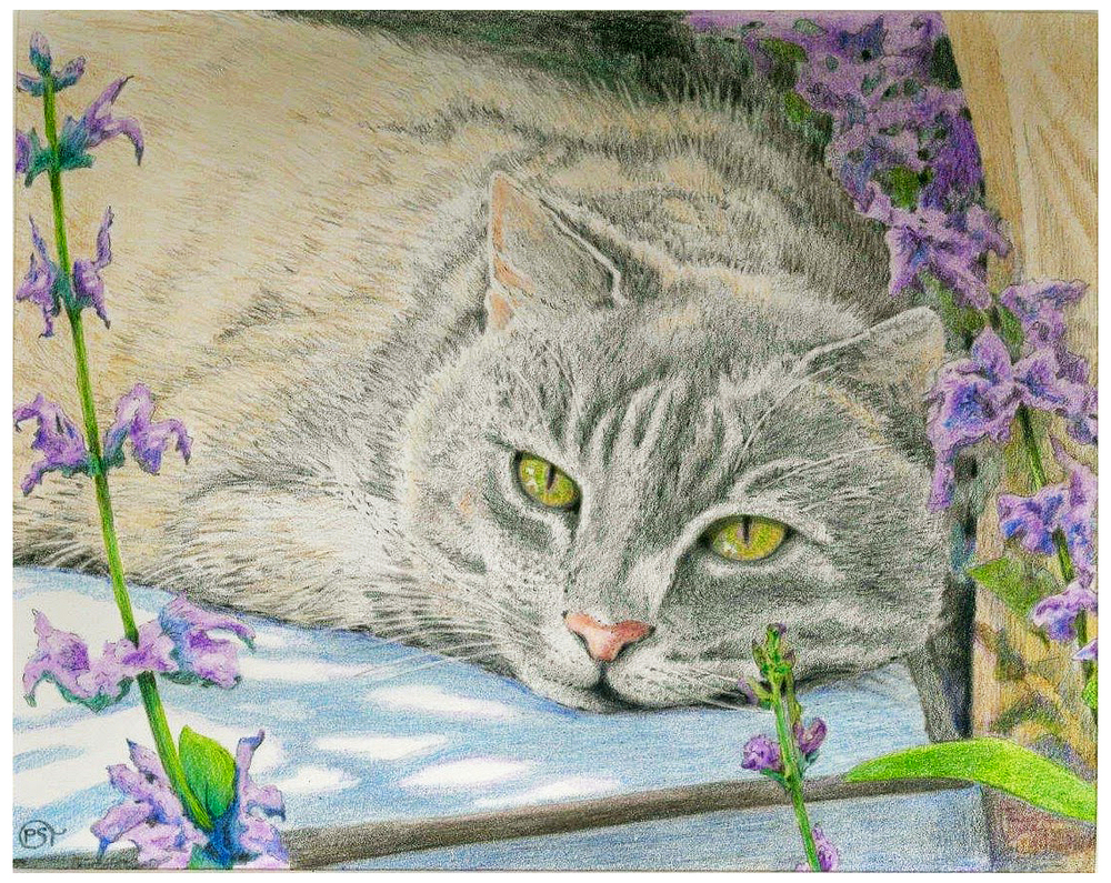 Felines and Flowers