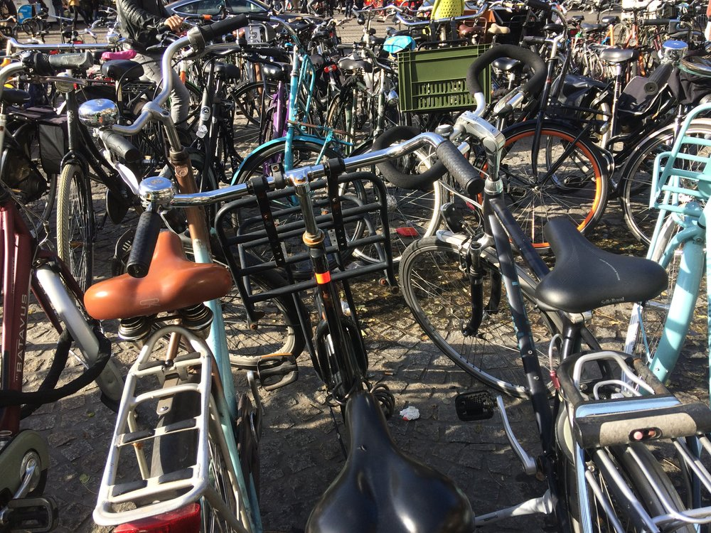 Bikes populate an Amsterdam sidewalk. Everything you've heard about the Dutch and their bikes is probably true.