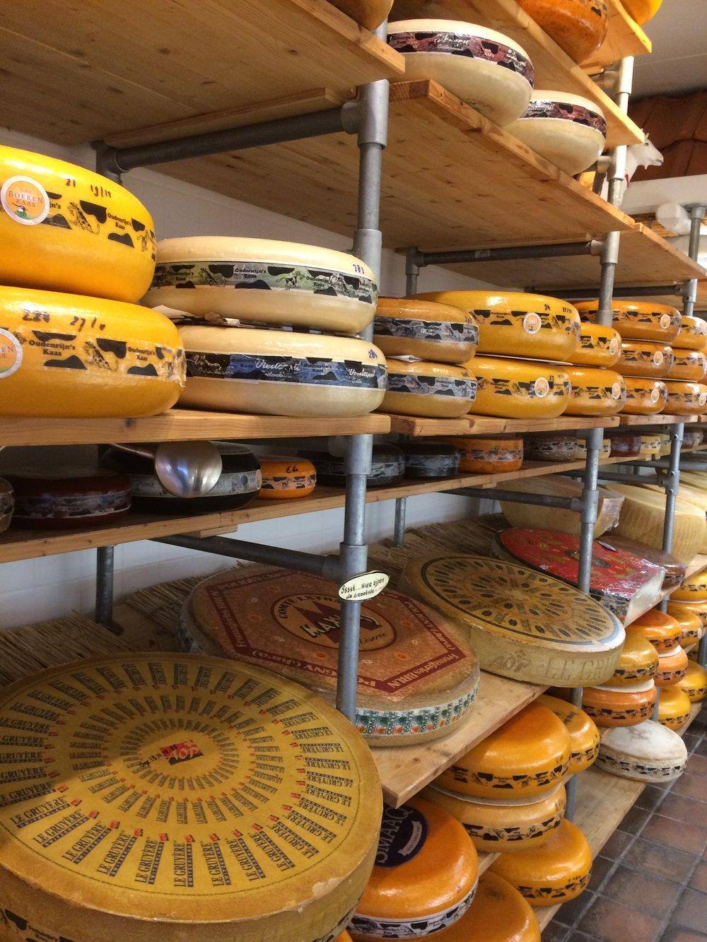 Beautiful Dutch cheese rounds