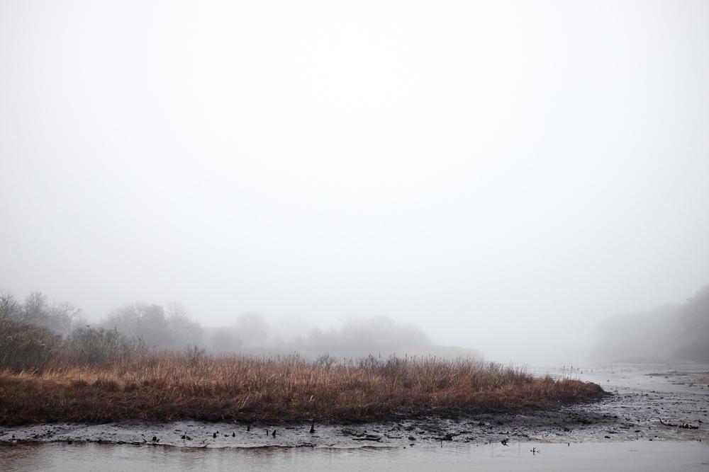 Landscape_027.jpg
