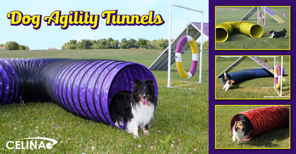 dog-agility-tunnels-for-training
