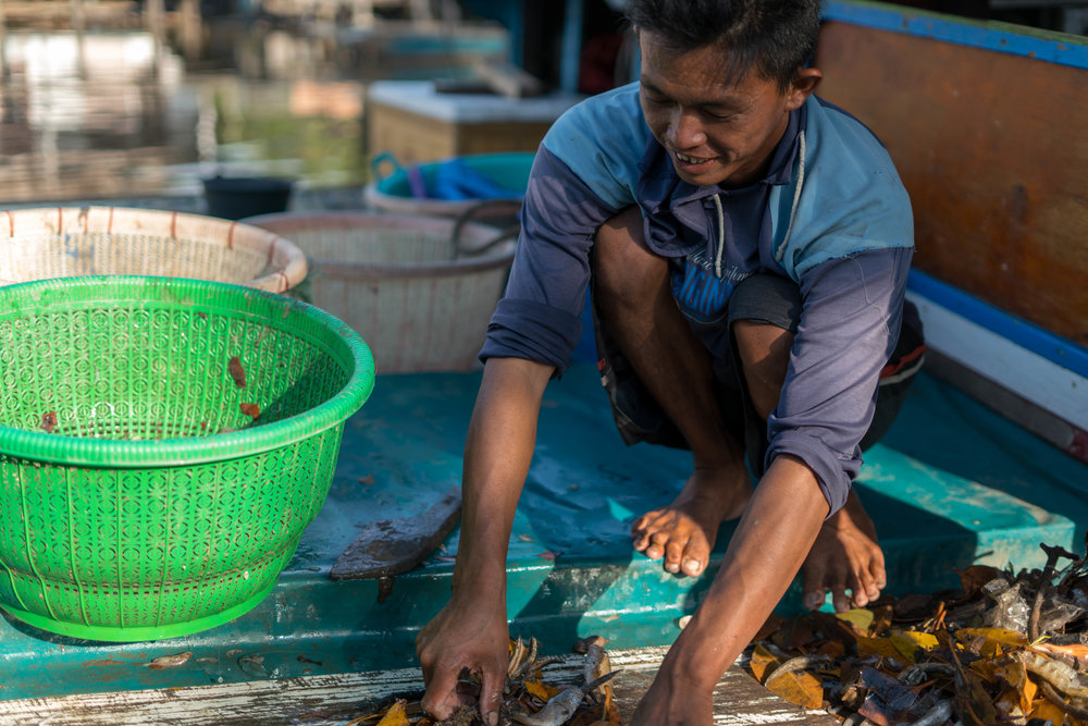 A fisherman sifting through his catch of the day in the ports of Sungai Nibung.
