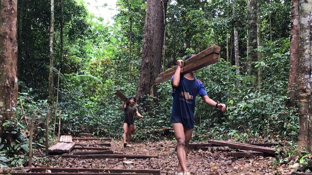 logs being carried.jpg