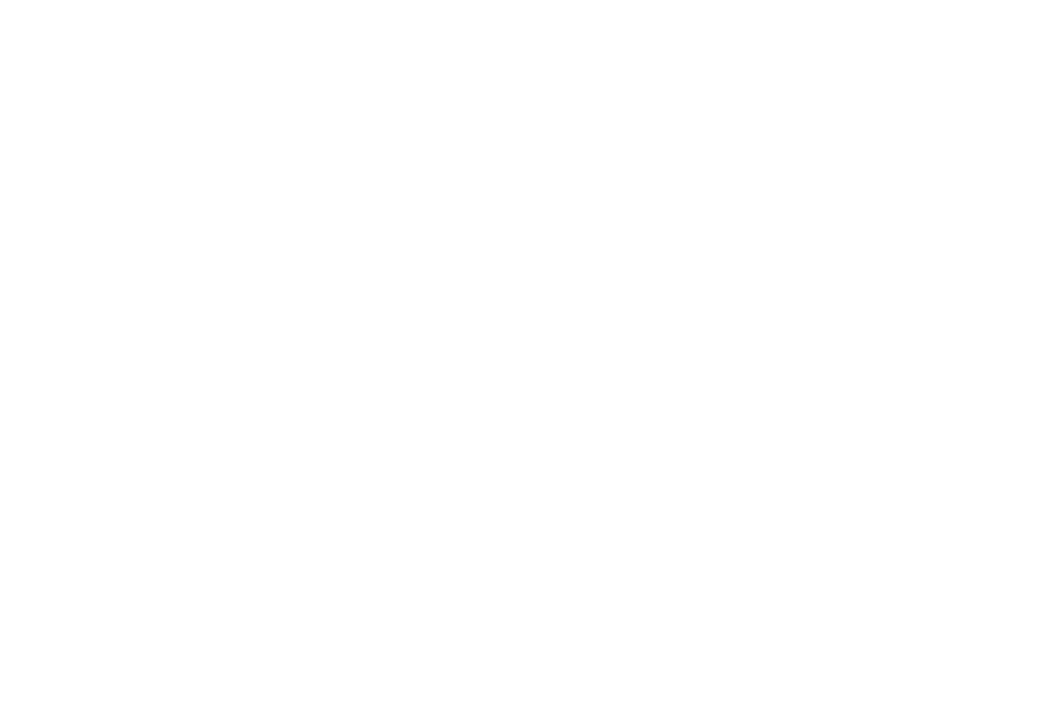 True Pacific Insurance Services
