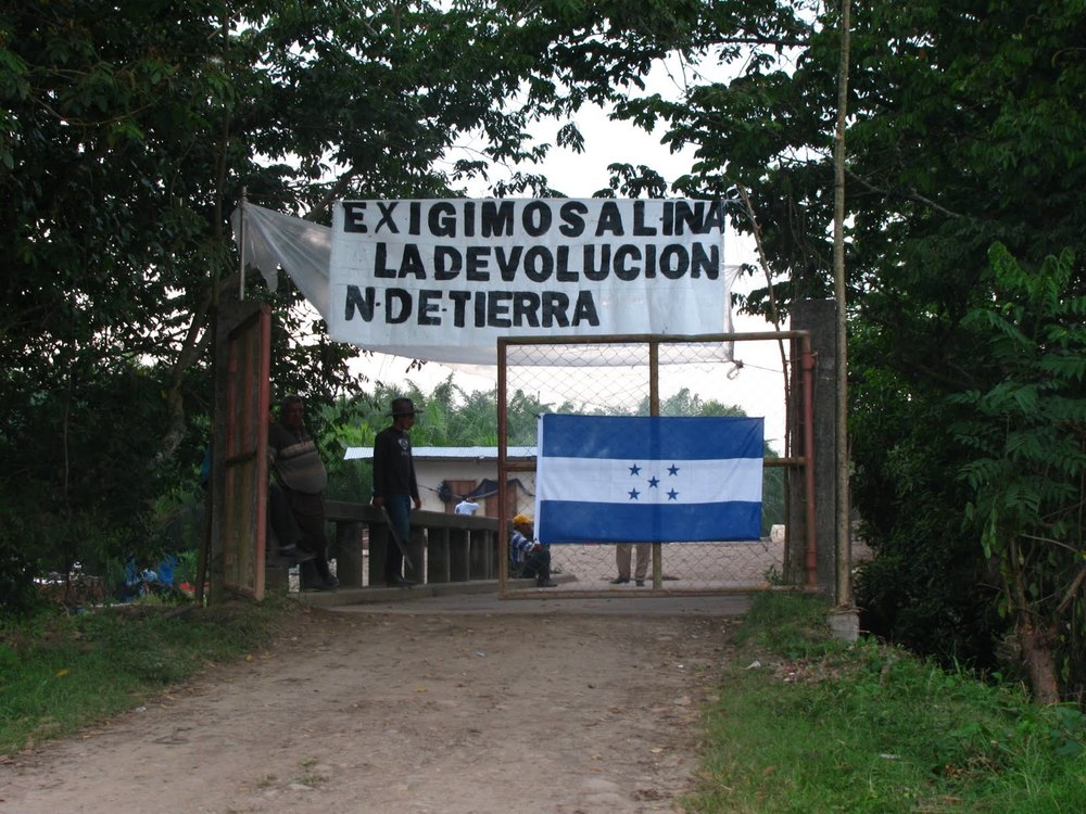 Entrance to MUCA land recuperation action on land of La Esperanza Cooperative in municipality of Tocoa.