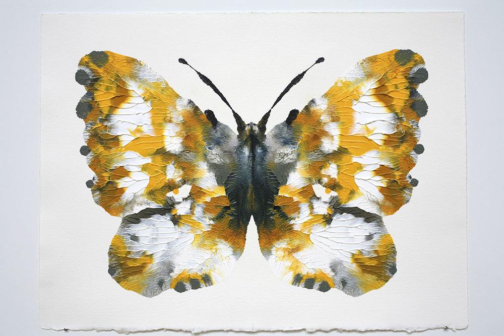 RC.Butterfly517.HG8741.jpg