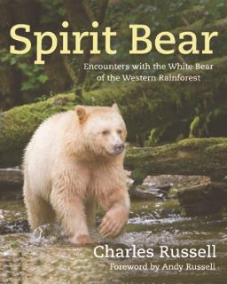 Spirit Bear by Charles Russell