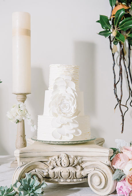 White Simple Cake