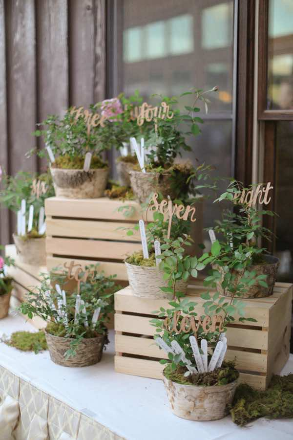 Potted Plants on Crates for Table Plan
