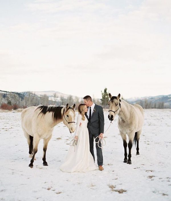 Winter Wedding with Bride and Groom and Horses
