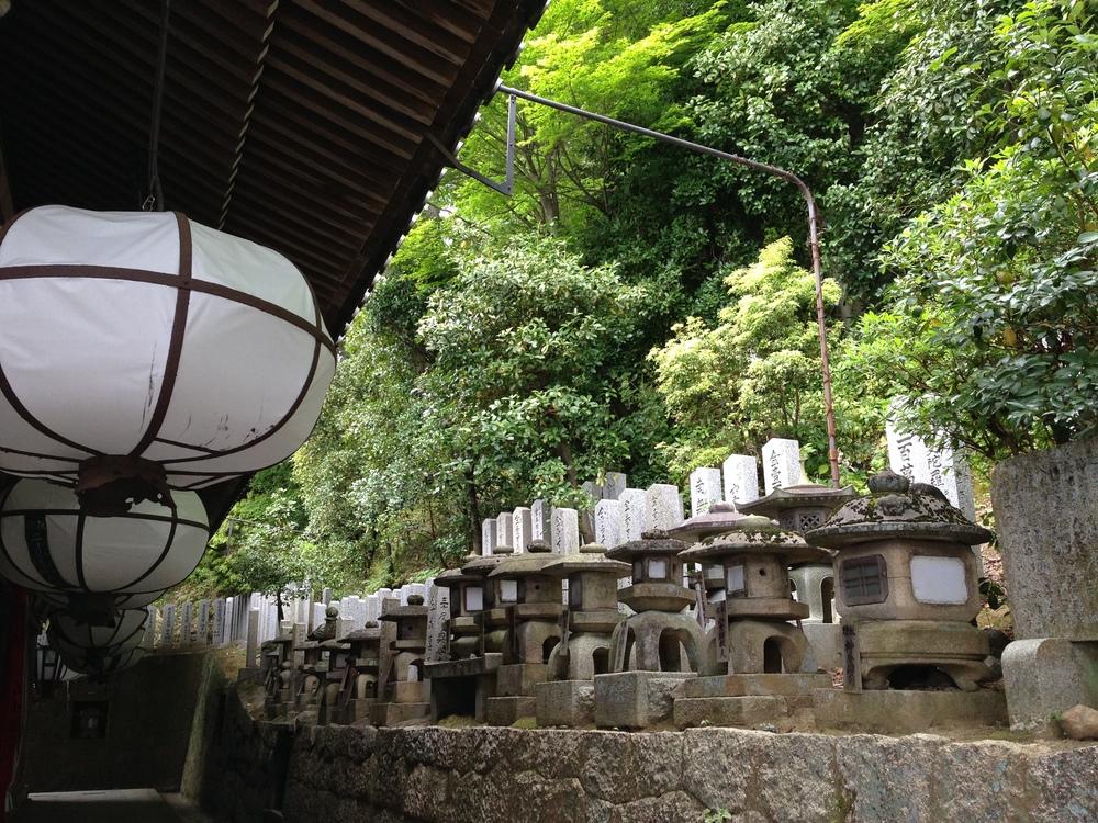 Devotion, Nara, Japan