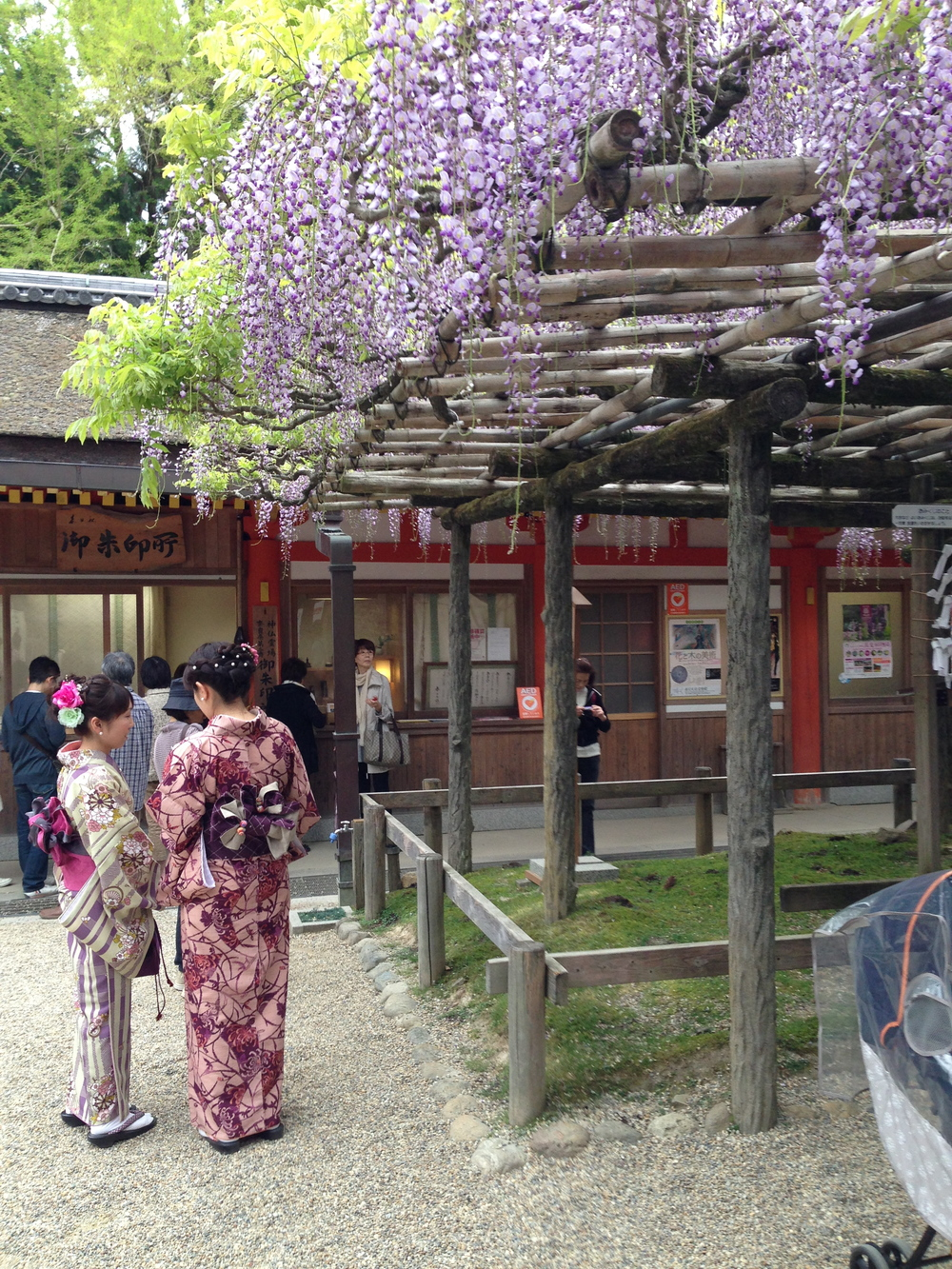 Geisha, Nara, Japan