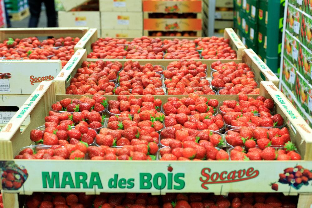 Rungis Marché International Paris