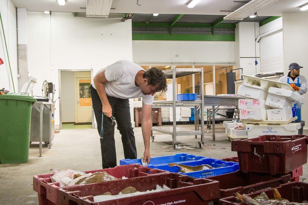 Bas Oonk zoekt vis uit bij Holland Vis in Scheveningen