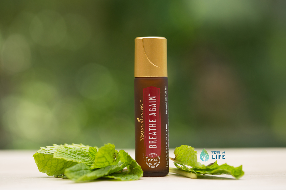 Breathe Again Roll-On  –  another grab-and-go favorite  –  combines four types of Eucalyptus essential oils with Peppermint and Copaiba. The result? A breath of fresh air perfect for school, the office or anywhere the day takes your family.