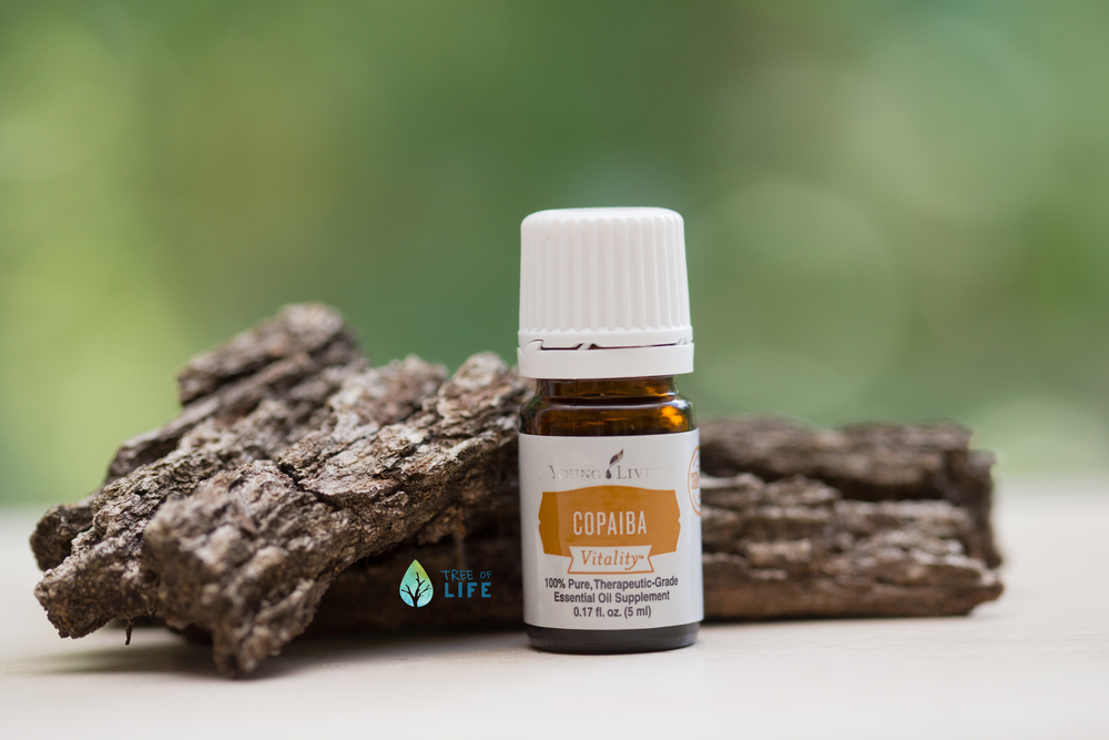 Copaiba is an enhancing oil. Anytime you apply an oil you can layer Copaiba on top of that to maximize the effectiveness and benefits you are receiving. Trust me, it is a great way to use Copaiba on a daily basis.