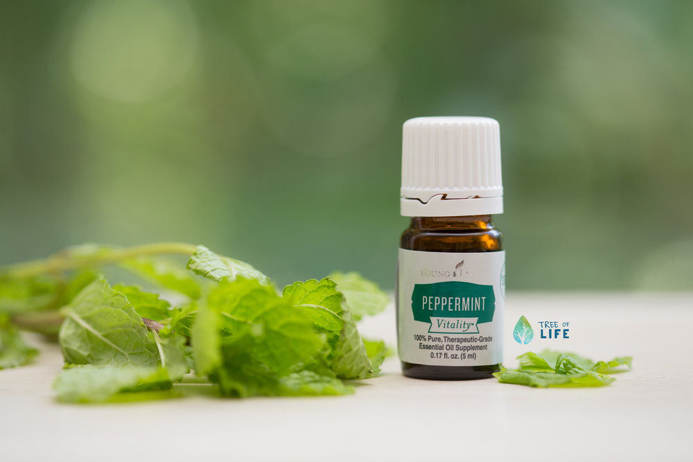 Put some pep in your step by adding a drop of Peppermint to a glass of water or tea. We also love Peppermint for digestive support and post-workout massage. Tip: Only put Essential Oils in glass or stainless steel containers.
