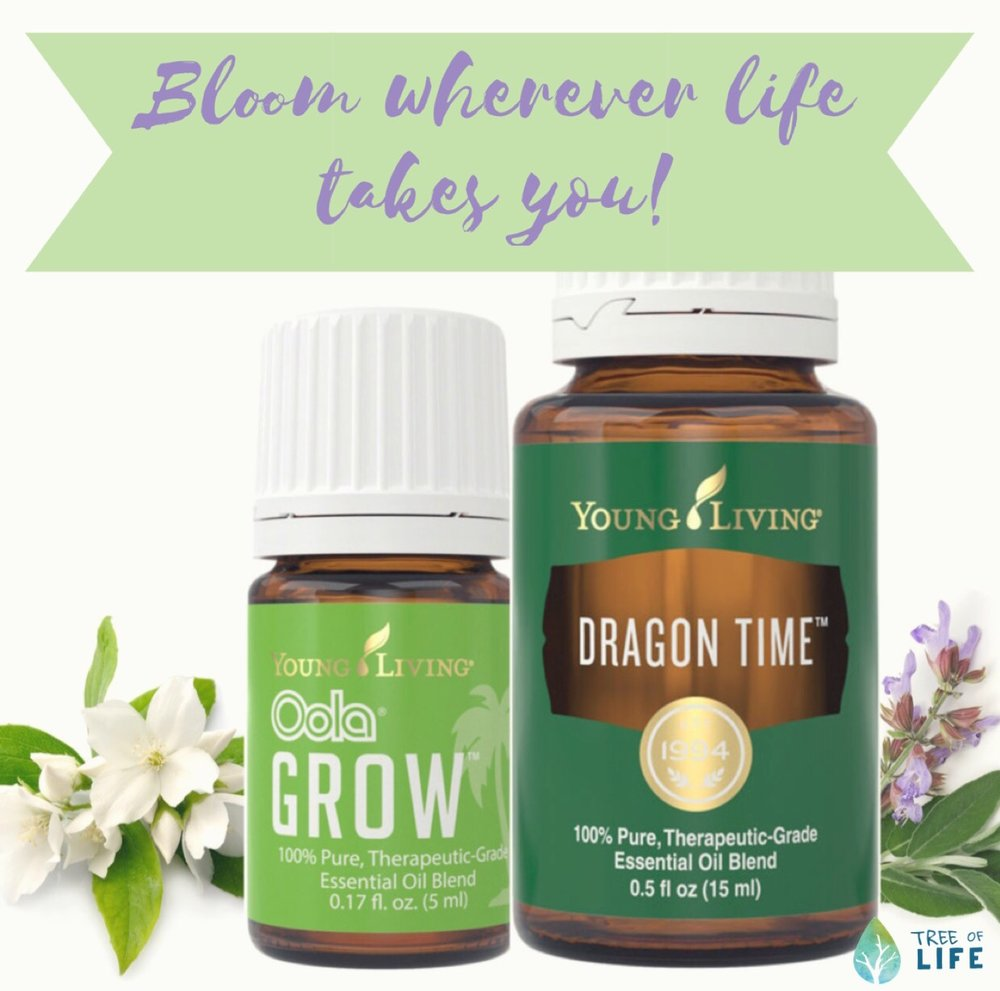 Spring flowers make wonderful oils! Jasmine, the white flower, helps uplift and inspire mood in Oola Grow and the purpleish flower, clary sage, helps support hormones in Dragon Time.