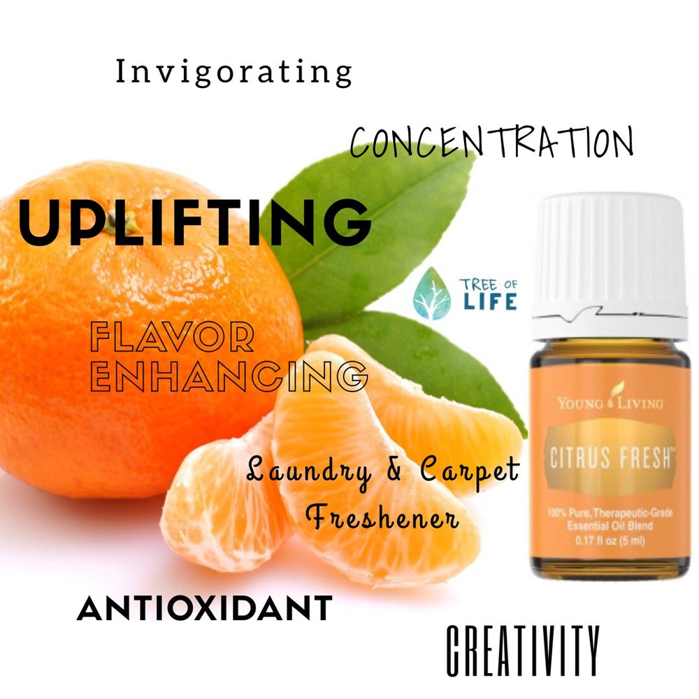 Citrus Fresh is now featured in the Premium Starter Kit! What an uplifting addition:)