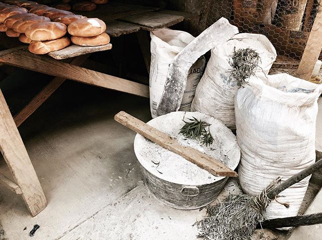 Today we watched a family from Patamban, a small indigenous pueblo in the mountains of Michoacán, bake Pan de Patamban (bread of Patamban) in their homemade oven made of mud. Everything was handmade. I might just leave my clothes here and fill my luggage with bread instead. Let me know if you want some. I'll have 50 lbs. If you want to see more, there are pictures in my story!