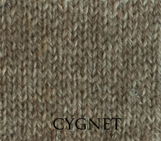 Cygnet1.jpg