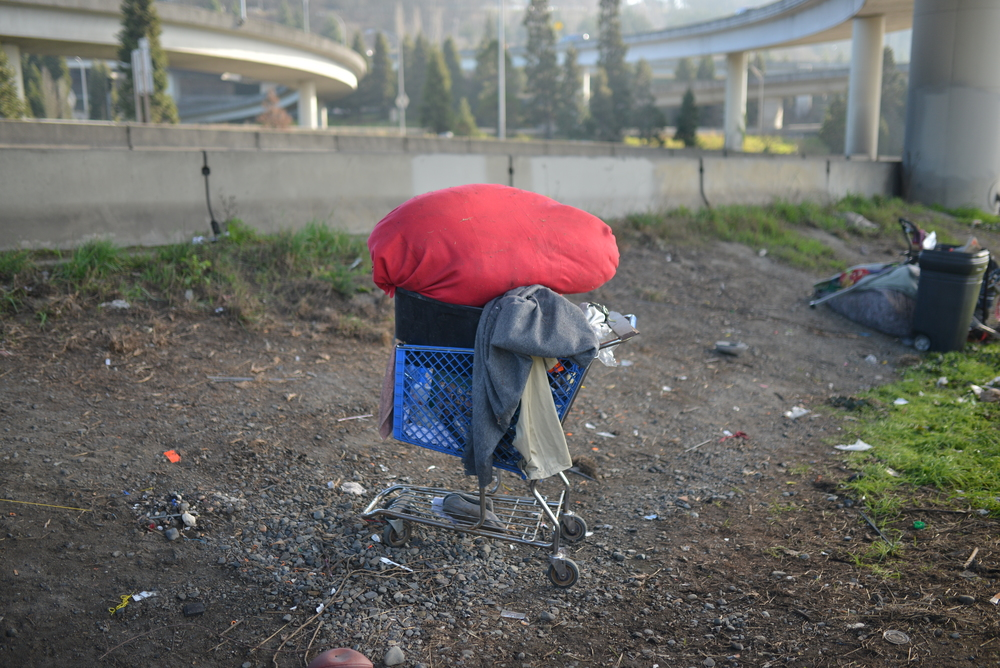 A shopping cart filled with linens and clothing sits feet away from Seattle's I-5. Despite the noise, this area feels removed and calm, and surprisingly -- safe.
