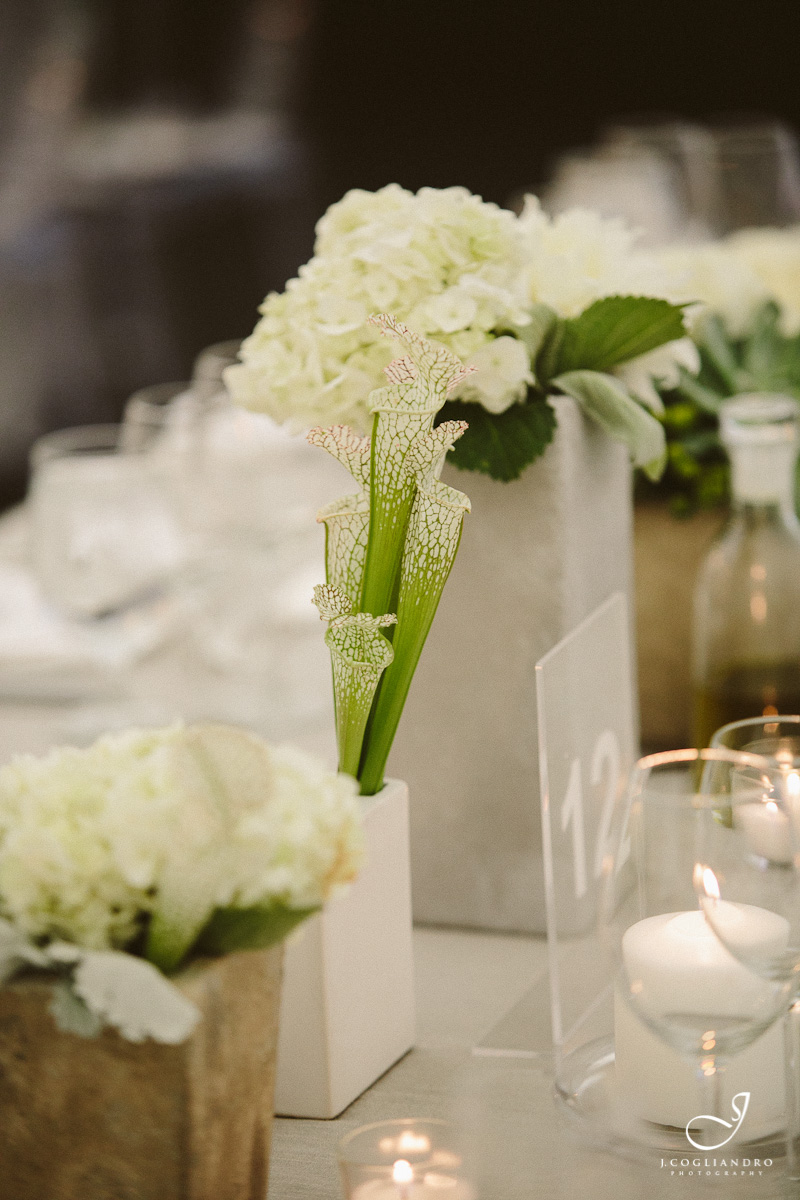 Succulent and white flower centerpiece