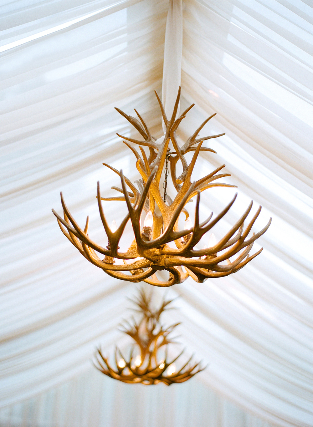 Antler Chandeliers Inside White Tent