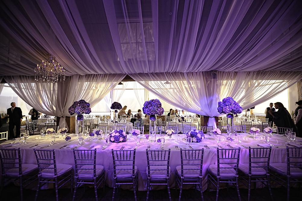 Purple & White Head Table